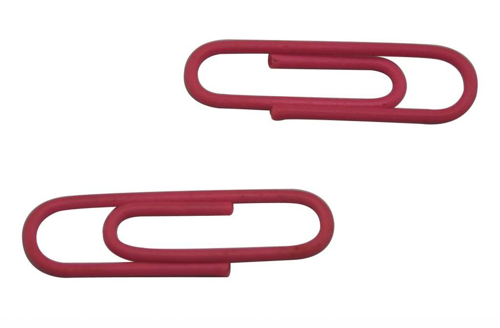 Ailisi Vinyl Coated Wire Paper Clips Color Pink 1.1 X0.3 Pack of 200