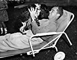 Richard Nixon (1913-1994)N37Th President Of The United States As The Republican Vice Presidential Candidate With His Cocker Spaniel Checkers At His Home In Washington DC September 1952 Poster Print by