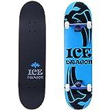 Ice Dragon 31 Inch Cruiser Trick Skateboard For Beginner
