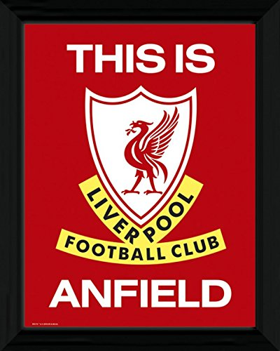 Football Framed Collector Poster - FC Liverpool, This is Anfield (16 x 12 inches)