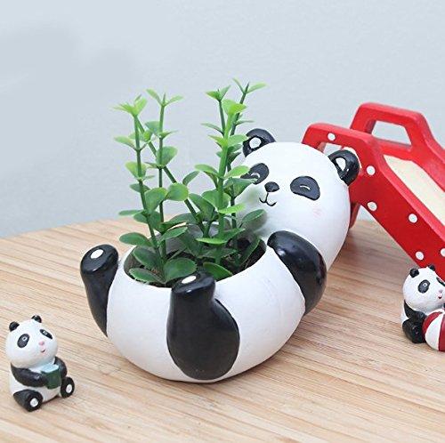 Binoster Cute Animal Plant Pots Cartoon Shaped Succulent Vase Flower Pots,Container,Home Decoration Planter Pots,Desk Mini Ornament (Colorful tortoise) (Panda)