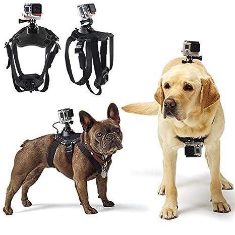 Amazon.com: Cool Hound - Correa de hombro para perro, con ...