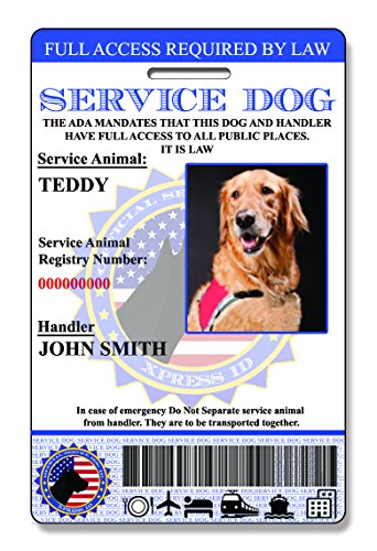 amazoncom digital and physical service dog id custom bundle includes registration to national dog registry pet supplies