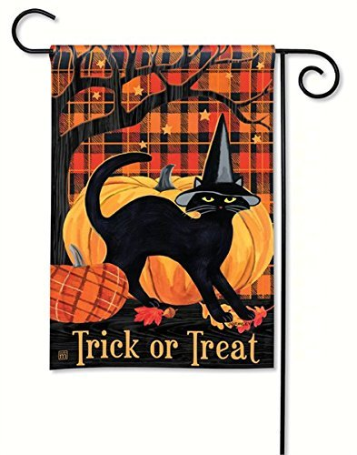 magnet works mail31227 witch hat