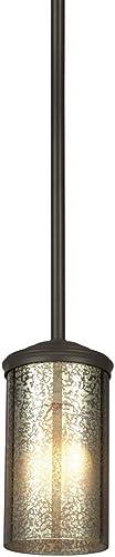 Sea Gull Lighting 6110401-715 One 6110401-715-One Light Mini-Pendant
