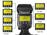 Kaavie - Travor SL-582N Large 2.2