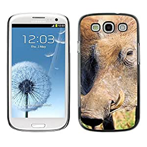 PU Cuir Flip Etui Portefeuille Coque Case Cover véritable Leather Housse Couvrir Couverture Fermeture Magnetique Silicone Support Carte Slots Protection Shell // M00312995 Cardo silvestre Naturaleza Natural // Apple iPhone 4 4S 4G