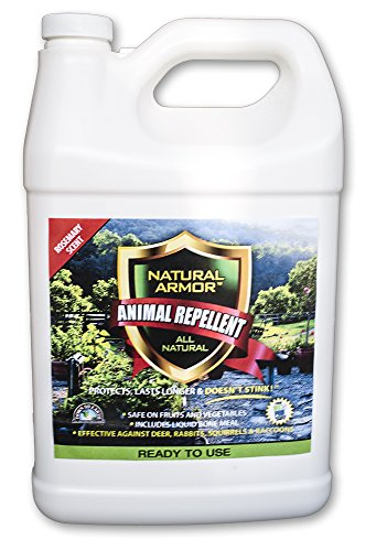 (Repellent Spray for Rodents & Animals. Cats, Rats, Squirrels, Mouse & Deer. Repeller & Deterrent for Dogs, Critters, Mice, Raccoon & Skunk. Natural Armor Rosemary Gallon Ready to Use )
