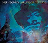 Valleys Of Neptune by Jimi Hendrix (2010-03-09)