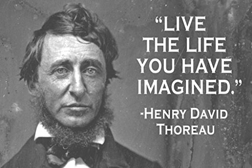 Live The Life You Have Imagined Henry David Thoreau Quote Po