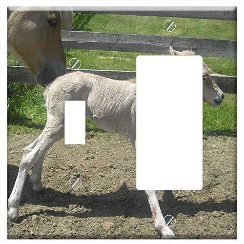 1-Toggle 1-Rocker/GFCI Combination Wall Plate Cover - Filly Horse Newborn Equine Foal Stallion Anim