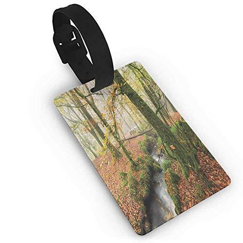 Cute Luggage Tag Woodland,Misty Autumn Woodland Stream at Golitha Falls on Bodmin Moor in Cornwall,Orange Green Yellow Romantic