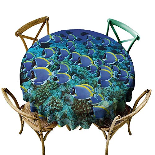 Jbgzzm Polyester Tablecloth Ocean Decor Collection School of Powder Tang Fishes in The Coral Reef Maldives Photography Party D71 Aqua Blue Yellow