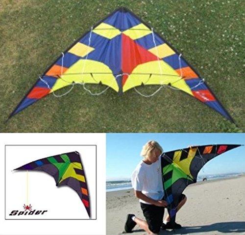 入門用スポーツカイト【専門店/Flying Wings Kite】SPIDER Yellow B01EHX2VBG