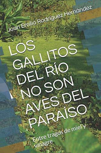 LOS GALLITOS DEL RÍO NO SON AVES DEL PARAÍSO: Entre tragos de miel y vinagre (Spanish Edition)