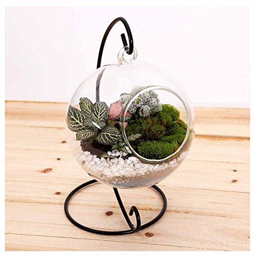 10L0L Terrarium Succulent Flowerpot Container