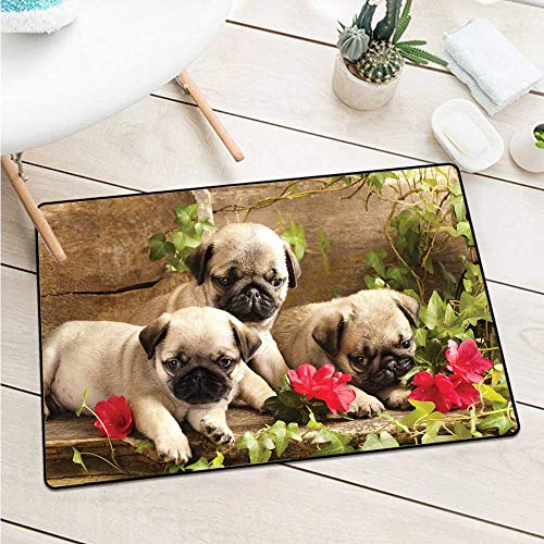 Pug Inlet Outdoor Door Mat Cute Sibling Puppies with Floral Arrangement in Front Wooden Backdrop Catch Dust Snow and Mud (W15.7 X L23.6 inch,Eggshell Brown Fern Green)