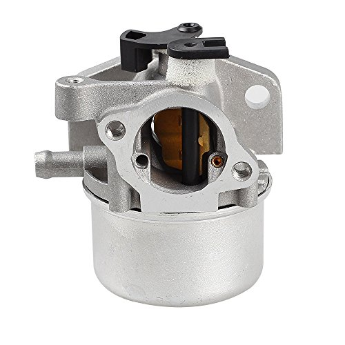 ANTO 799866 Carburetor for Briggs Stratton 794304 796707 790845 799871 Toro Craftsman Carburetor Motor Lawn Mower Part with Gaskets Spark Plug Air Filter Fuel Filter