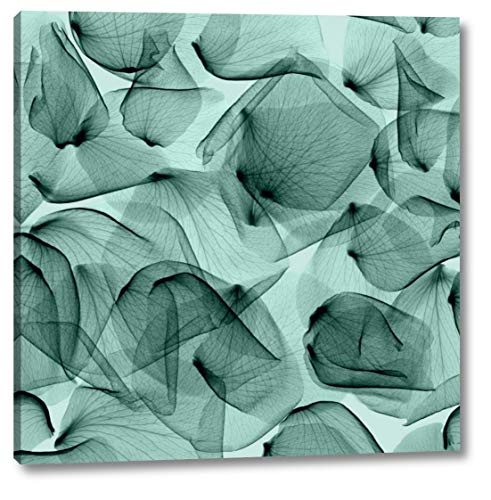 """Rose - Seafoam by Steven Meyers - 23"""" x 23"""" Gallery Wrapped Giclee Canvas Print - Ready to Hang"""