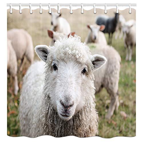 DYNH Farm Animals Shower Curtains, Country Farm Animal Curl Sheep, Flock Grazing, Cute Lamb Close-up Bath Curtain, Polyester Fabric Bathroom Curtain with 12 Hooks, 69X70 - Cute Lamb
