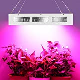 Morsen MAX12 Super Bright led grow Light 3600W with