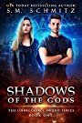 Shadows of the Gods (The Unbreakable Sword Series Book 1)