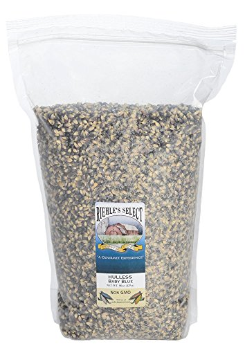 Riehle's Select Popping Corn - Hulless Baby Blue Whole Grain Popcorn - 6lb (96oz) Resealable Bag