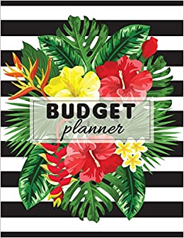 budget planner daily budget planner and organizer with monthly and