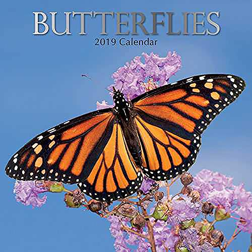 Butterfly Calendar - 2019 Wall Calendar - Butterfly Calendar, 12 x 12 Inch Monthly View, 16-Month, Insects Theme, Includes 180 Reminder Stickers