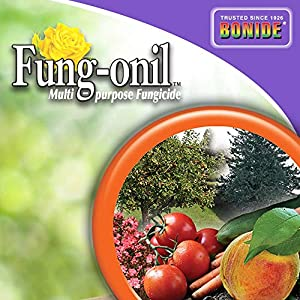 Bonide (BND883) - Fungal Disease Control, Fung-onil Multi-Purpose Ready to Use Fungicide (32 oz.), Brown/A