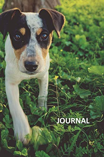 Journal: Jack Russell pup Useful Bullet Journal Dot Grid Daily Planner Student for researching how to care for a terrier