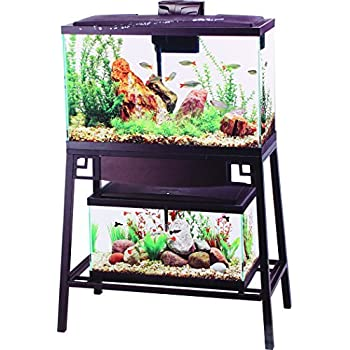 Amazon.com : Aqueon Forge Metal Aquarium Stand, 30 by 12 ... 10 Gallon Fish Tank Stand Metal