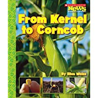 From Kernel to Corncob (Scholastic News Nonfiction Readers: How Things Grow)
