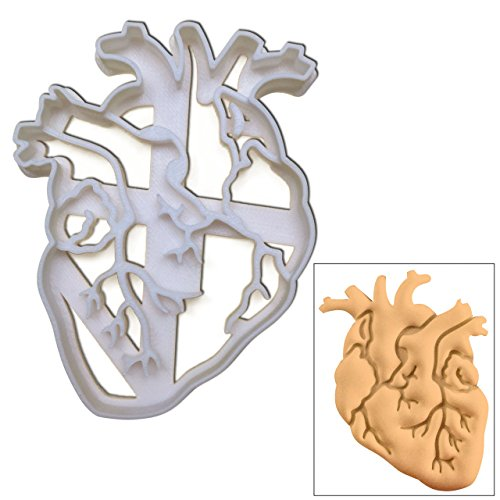 Anatomical Heart Cookie cutter, 1 pc, Ideal for Medical themed party (Halloween Cut Out Sugar Cookie Recipe)