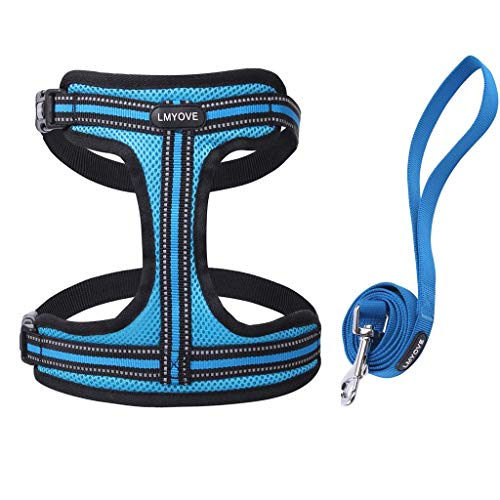 Lmyove Dog Pet Adjustable Mesh Harness with Leash,Blue,Small