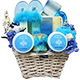 Art of Appreciation Gift Baskets    All About Me Vanilla Spa Bath and Body Set