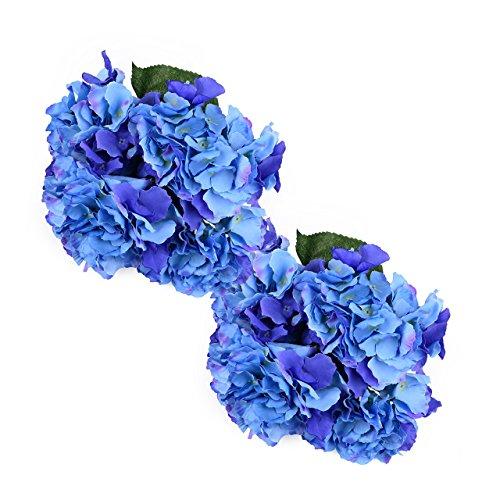 oasis blue flower petals - 2