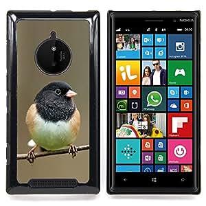 Eason Shop / Premium SLIM PC / Aliminium Casa Carcasa Funda Case Bandera Cover - Spring Branch Invierno Naturaleza - For Nokia Lumia 830