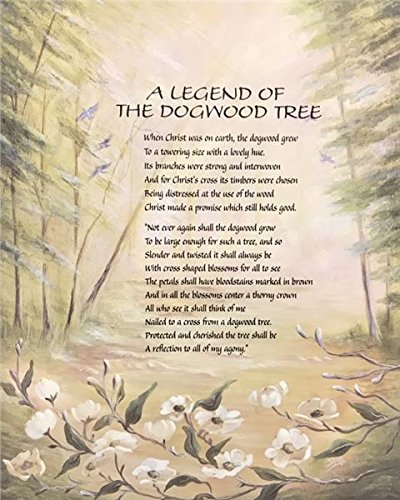 photograph relating to Legend of the Dogwood Tree Printable identified as : Unframed Print A Legend of The Dogwood Tree I