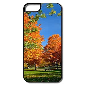 IPhone 5 5S Hard Plastic Cases, Orange Fall Trees White/black Cases For IPhone 5S