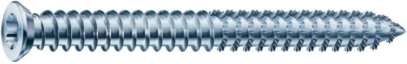bleu 1021010750405 Lot de 100 Torx30 Armature pour cadre SPAX RA zingu/é pour une fixation sans chevilles