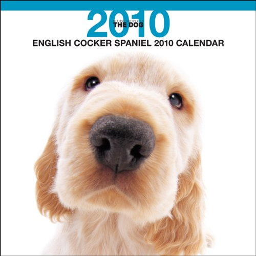 (English Cocker Spaniel 2010 Square Wall ARTLIST (Multilingual Edition) )
