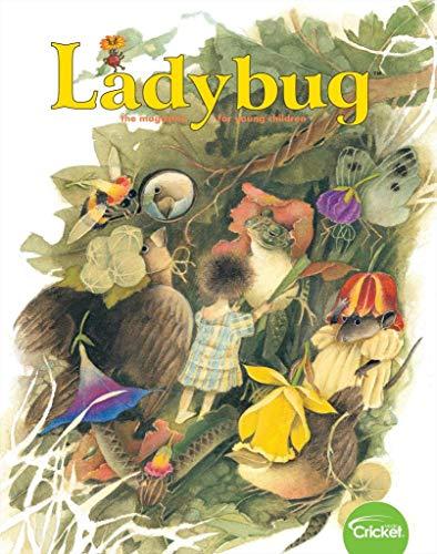 Ladybug ()