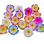 VDV-Artificial-Flowers-10Pcslot-Plumeria-Hawaiian-PE-Foam-Frangipani-Artificial-Flower-Headdress-Flowers-Egg-Flowers-Wedding-Decoration-Party-Supplies-Teal-Artificial-Flowers-H04