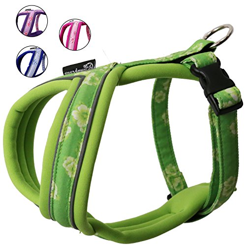 Soft Light-weight Harness Comfortable Harness Flower Harness for Active Dogs for Small Medium Dogs (45, Green)