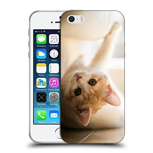 Just Phone Cases Coque de Protection TPU Silicone Case pour // V00004175 chaton rouge amuser sur un plancher // Apple iPhone 5 5S 5G SE