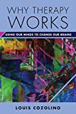 Why Therapy Works: Using Our Minds to Change Our Brains (Norton Sereis on Interpersonal Neurobiology)
