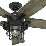 Hunter Fan 54' Weathered Zinc Outdoor Ceiling Fan with a Clear Glass LED Light Kit and Remote...