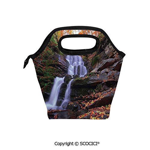 Lightweight Portable Picnic tote lunch Bags Mountain Waterfall Autumnal Forest Fallen Leaves Moss Cascade Serene View lunch bag for Employee student Worker.