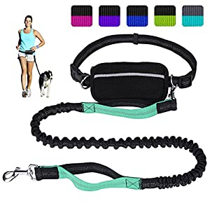 LANNEY Hands Free Dog Leash for Running Walking Training Hiking, Dual-Handle Reflective Bungee, Poop Bag Dispenser Pouch, Adjustable Waist Belt, Shock Absorbing, Ideal for Medium to Large Dogs 28